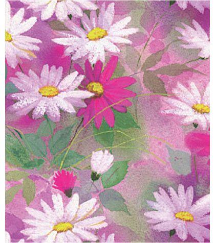 """Daisy Dance Gift Wrap, 24"""" x 417'"""