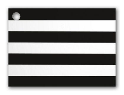 "Black & White Stripes Gift Tags, 3 3/4 x 2 3/4"""