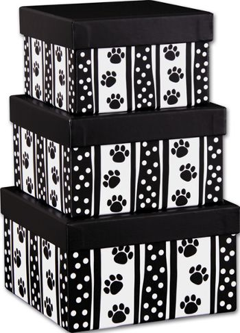 Polka Dot Paws 3-Piece Nested Box Sets, Square