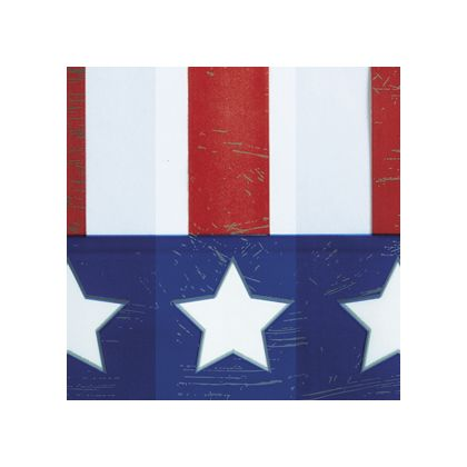 Stars and Stripes color swatch