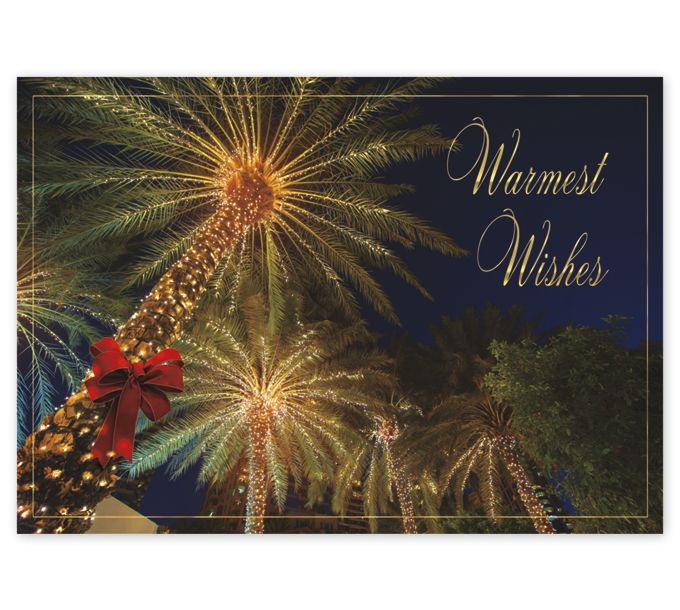 Tropical Wishes Holiday CardsHP17304_N7304