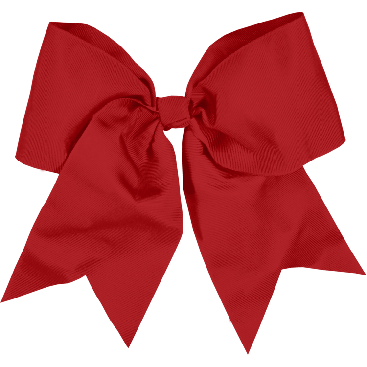 Red Bow for Class