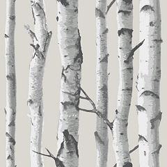 Birch Tree Peel-and-Stick Wallpaper